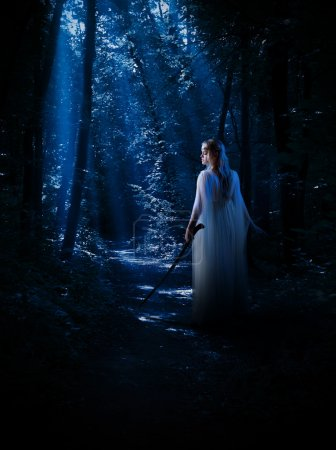 Elven girl at night forest