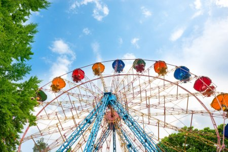 Ferris wheel in the green park