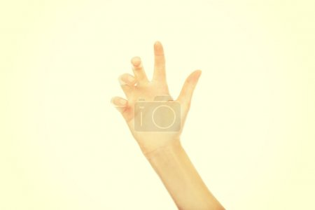 Photo for Scratching woman hand with five fingers. - Royalty Free Image