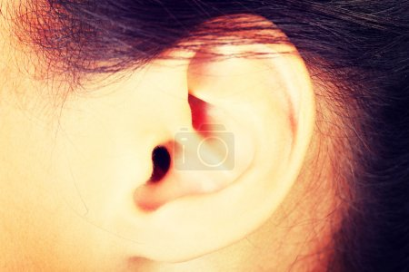 Photo for Young woman ear closeup. - Royalty Free Image