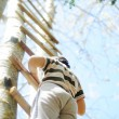 Happy kid having fun climbing on ladder in forest ...