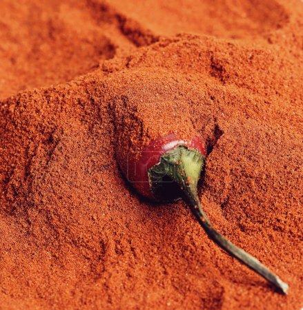 Chili pepper and powder spice