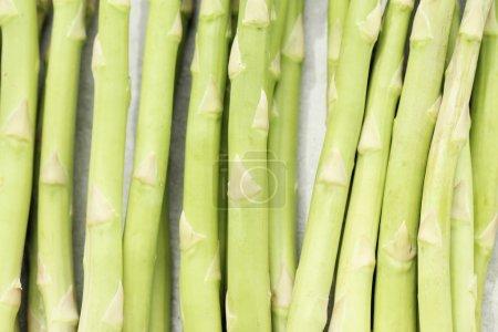 close-up fresh Asparagus