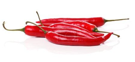 Photo pour Piment rouge sur fond blanc - image libre de droit