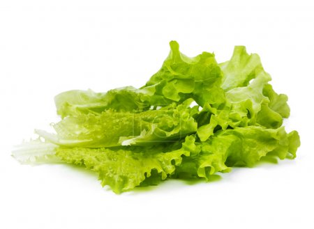 Delicious lettuce leaves close up isolated on whit...