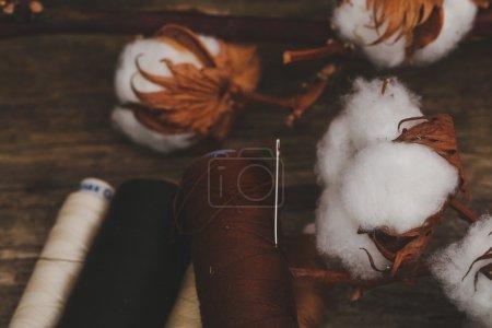 Discussions avec fleur de coton