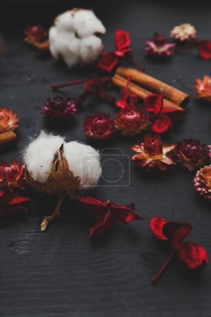Dried flowers and cinnamon