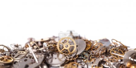Heap of small gears on a white