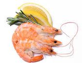 Lahodné krevety na bílé