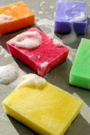 colorgul sponges on table