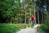 Mountain biker cycling riding in green forest