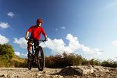 Mountain biker riding MTB