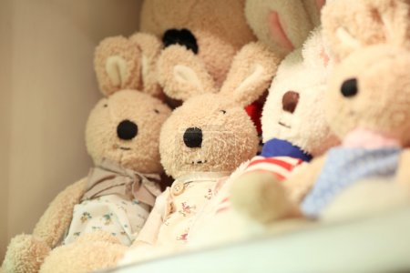 Toy rabbits in store