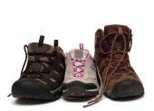 Boty rodina