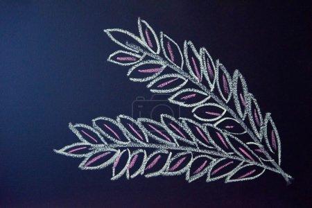 chalkboard drawings view