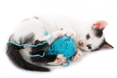 Close-up kitten playing with ball of yarn...