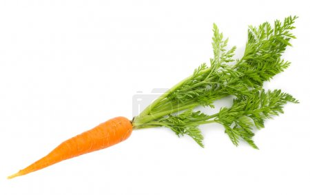 Photo for Close-up carrot with leaves, isolated on white - Royalty Free Image
