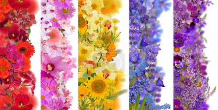 Strips from flowers