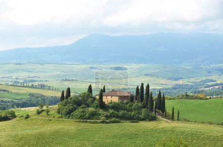Typical Tuscan landscape.