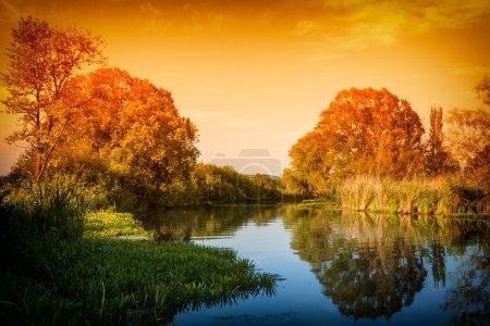 Photo pour Coucher de soleil nature morte sur une forêt bordée d'arbres rive - image libre de droit