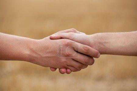 Photo pour Deux hommes, fermiers lui serrent la main sur le fond du champ . - image libre de droit