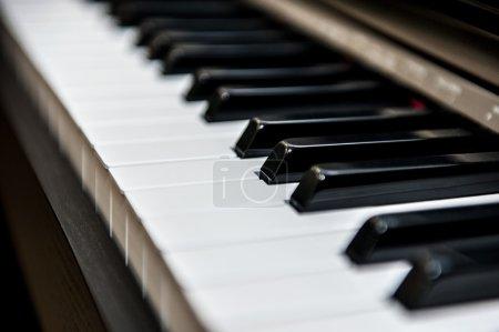 Photo pour Piano, pianoforte, clavier, jeu, jouer, musique, musique, mélodie, virtuose, mélodie, mélodie, mélodie, sonnerie, ton, note, accord, tonalité, instrument, forte, piano, tempo, noir, blanc, apprendre, étudier, créativité, majeur, mineur . - image libre de droit