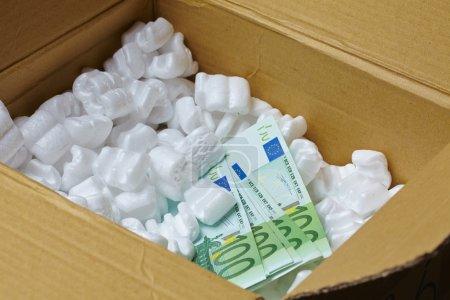 Billets en euros dans la zone