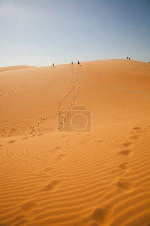 The traveler in the desert