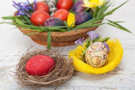 Photo pour Œufs de Pâques faits maison colorés dans le nid - image libre de droit