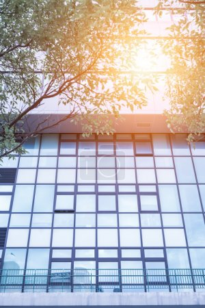 Photo for Office building with glass windows and sunshine - Royalty Free Image