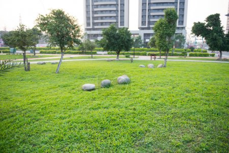 Photo for Open Urban Green Park Space in front of Residential Buildings - Royalty Free Image