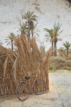 Old bicycle in the Sahara