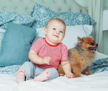 baby with a dog in bed