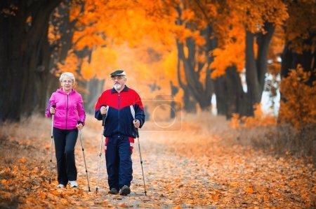 Photo pour Couple sénior faisant de la marche nordique dans le parc - image libre de droit