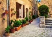 typical street with flower pots in Valldemossa