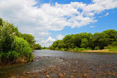 River summer landscape with blue sky and clouds