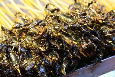 Black scorpions on skewers cooked