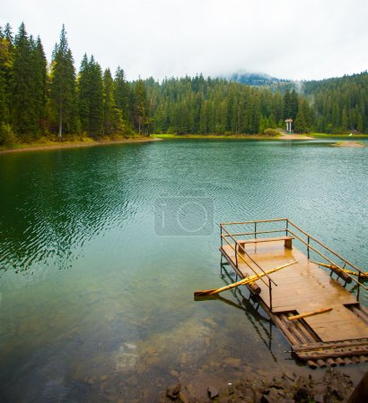 Beautiful lake and forest