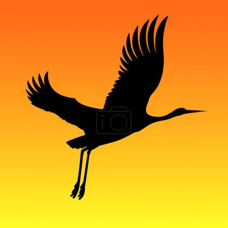 Silhouette of the crane on red-yellow background.