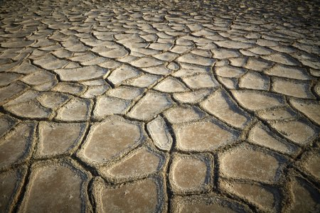 Dried and cracked earth background