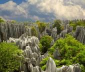 Kámen lesní shi lin. Národní park v provincii yunnan, Čína