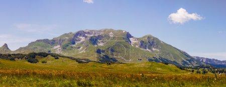 Photo pour Vue panoramique de la vallée de paysage, vert de montagne nature au jour de l'été. Parc national Durmitor, Montenegro, Europe. - image libre de droit