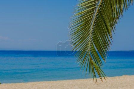 Summer Vacation Holiday Travel