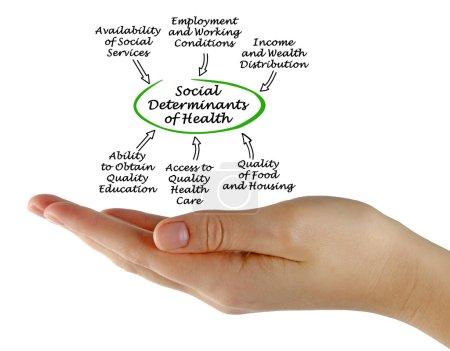 Photo pour Déterminants sociaux de la santé - image libre de droit