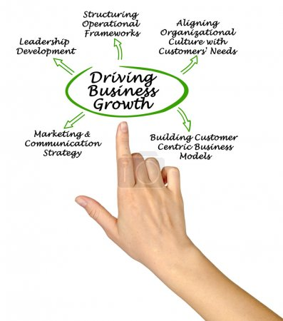 Diagram of Driving Business Growth