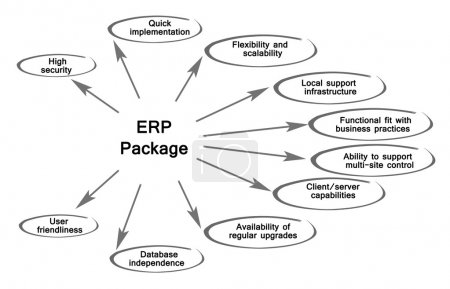 Photo for Diagram of  ERP Package - Royalty Free Image