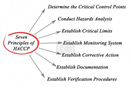 Diagram of Principles of HACCP