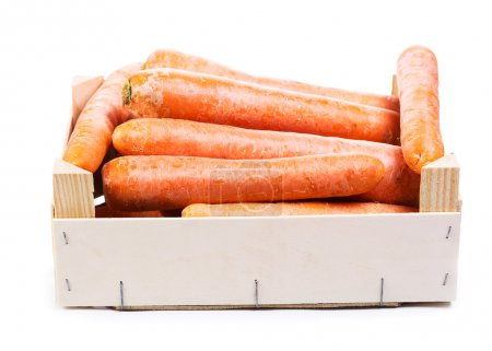Fresh carrots in wooden box