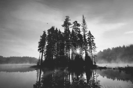 Black and white island