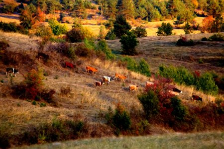 autumn oil painting labdscape